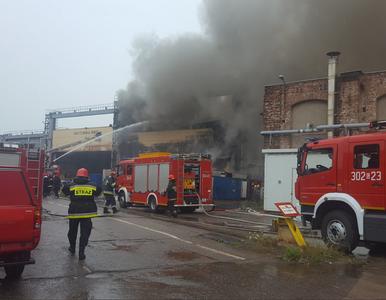 Pożar na terenie stoczni gdańskiej. 17 zastępów straży w akcji
