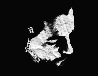 TIFF '15 - James White