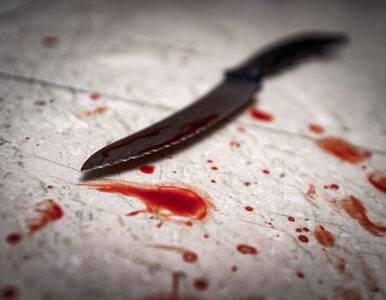 Horror w Wiśniowej. 14-latka zabiła własną babcię