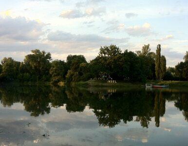 Magdeburg walczy z największą od... 1000 lat powodzią