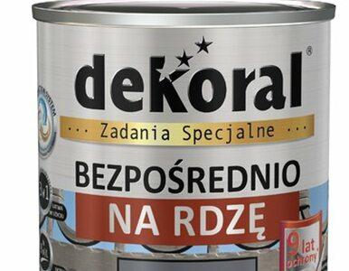 Farby do zadań specjalnych - nowa sublinia produktów marki Dekoral