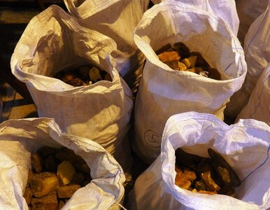 Udaremniono przemyt ponad 400 kg bursztynu. W grę wchodzi ogromna stawka