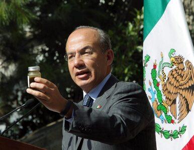Meksyk walczy z kartelami narkotykowymi