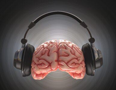 Jak na mózg wpływa słuchanie Mozarta? Zmiany widać już po 30 sekundach