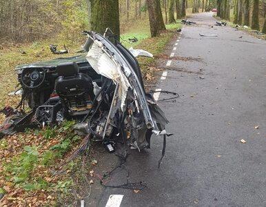 To szaleństwo. Audi A8 rozleciało się na kawałki, kierowca zginął. Na...