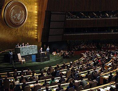 Sprawa Palestyny - Sikorski potwierdza informacje Wprost