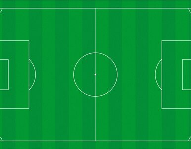 Liga francuska już gra: bramka Krychowiaka