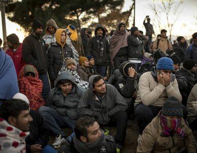 Specjalne dowody dla migrantów w Niemczech. W środku - dane o stanie...