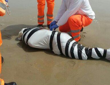 """Zwłoki na plaży. """"Ofiara porachunków, był torturowany"""""""