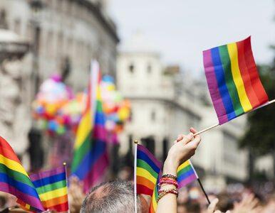 Czy środowisko LGBT jest dyskryminowane w Polsce? Są wyniki sondażu