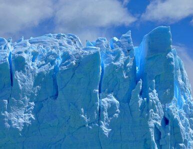 Zwiedź Antarktydę nie ruszając się z domu