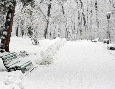 Zima już jest w Polsce. Przyszła o 12:12