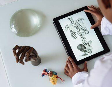 Ważna anatomiczna ciekawostka odkryta. Co kryje nasz układ...