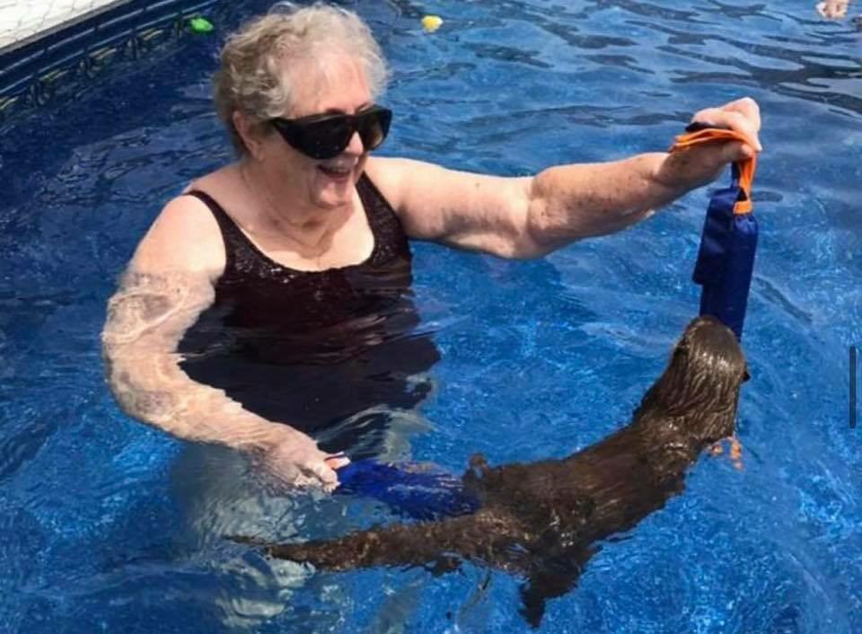 Turystka pływająca z wydrami