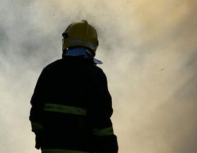 MSWiA nagradza policjantów i strażaków. Milion złotych do podziału