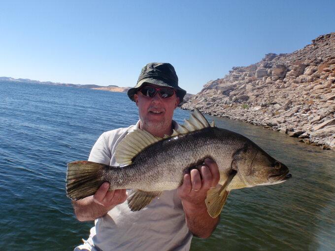 Okoń nilowy (jezioro Nasera)