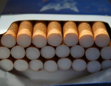 Łukaszenka i białoruski reżim żyją z przemytu papierosów