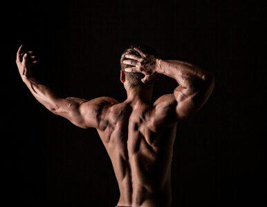 Hipertrofia mięśniowa – efekt kulturysty. 10 zasad treningu...