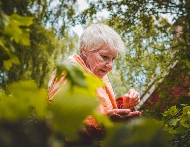 To jedno badanie pozwoli zdiagnozować chorobę Alzheimera na długo przed...