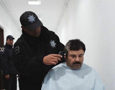 """Dom """"El Chapo"""" będzie można wygrać na loterii. Podobnie z willą Amado..."""