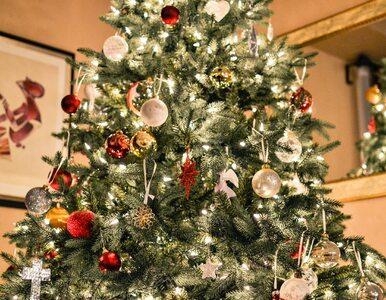 Co to jest syndrom choinki, czyli świąteczny quiz o zdrowiu. Sprawdź,...