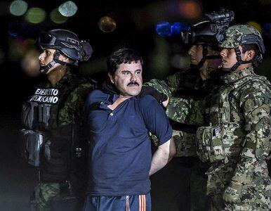 Prawdziwa historia El Chapo. Jak handlarz pomarańczami stał się...