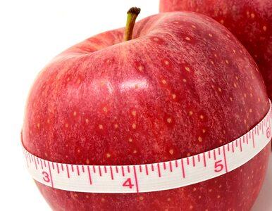 Dieta 1000 kalorii pozwala sporo schudnąć. Jak uniknąć efektu jo-jo?