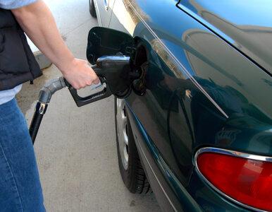 Pijany klaun próbował okraść stację benzynową. Interweniowała policja