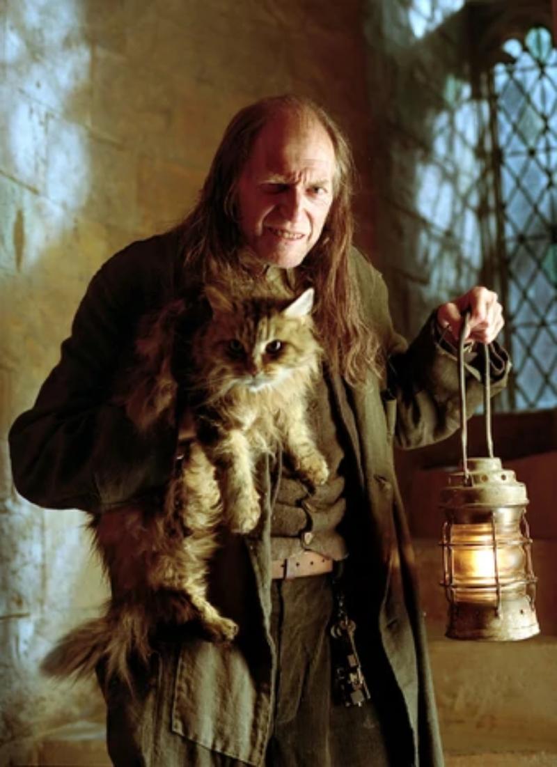 """Jak nazywa się ten kot z """"Harry'ego Pottera""""?"""