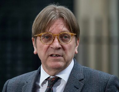 """Verhofstadt i Rutte mają plan jak obejść weto Polski i Węgier? """"Możliwa..."""