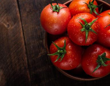 Czy można używać pomidorów do pielęgnacji skóry?