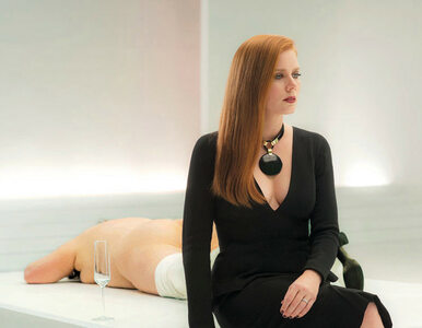 7 American Film Festival - polecane