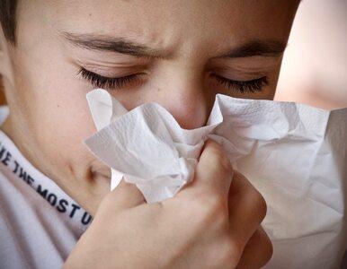 W tym roku sezon alergiczny będzie dłuższy i silniejszy