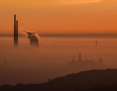"""Prof. Zielonka dla """"Wprost"""": """"Dziś dla Polaków smog jest gorszy niż COVID"""""""