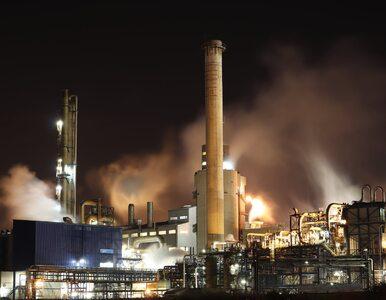 Fatalna wiadomość dla klimatu. Po pandemii zaczniemy niszczyć planetę ze...