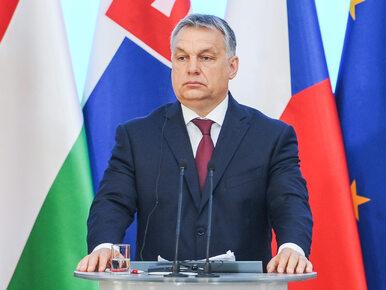 Węgry wybudowały na granicy mur za 120 mln euro. Chcą powstrzymać migrantów