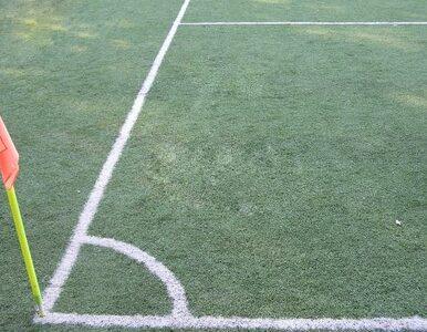 Stadion Narodowy potrzebował renowacji przed półfinałem