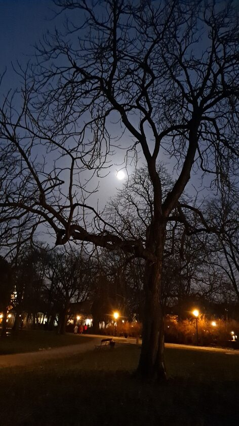 Niebieski Księżyc