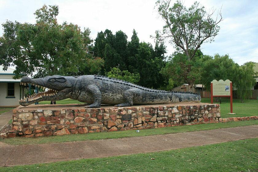 Naturalnej wielkości figura krokodyla upolowanego przez Krys Pawlowski w 1957 r.