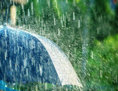 Wtorek z deszczem na północy. Temperatura sięgnie 23 stopni