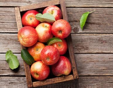 5 owoców bogatych w błonnik. Które najlepiej wspomagają jelita?