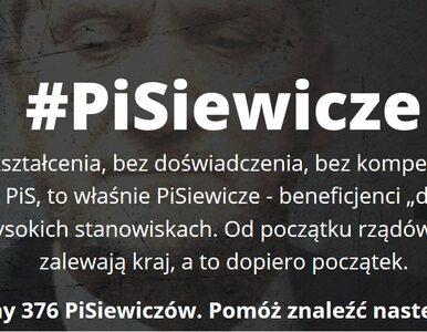 255 Misiewiczów, 376 PiSiewiczów. Czy akcje PO i Nowoczesnej okazały się...