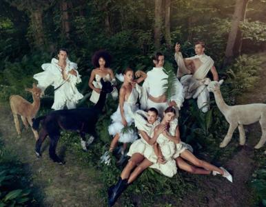 """""""Top Model"""". Kontrowersje po sesji z alpakami. Właścicielka zwierząt:..."""