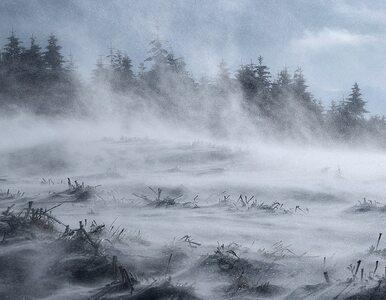W poniedziałek śnieg w większości kraju. Jaka pogoda czeka nas w...