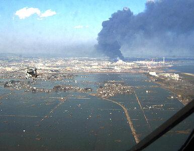 Japończycy nie przewidzieli takiego tsunami