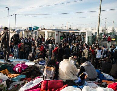 Raport Pew: Potroi się liczba muzułmanów w Europie. Może sięgnąć 75...