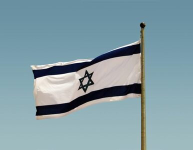 Polskie wojsko ogląda drony w Izraelu?