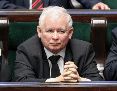 Możliwe spotkanie Kaczyński-Trump? Wicemarszałek: Jeżeli strona...