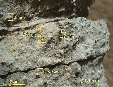 Łazik Curiosity odkrył dowody gigantycznej powodzi na Marsie. Kolejny...