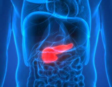 Będzie przełom w leczeniu raka trzustki? Nowe badanie kliniczne